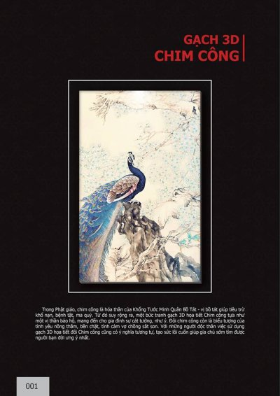 Catalogue chủ đề Chim Công